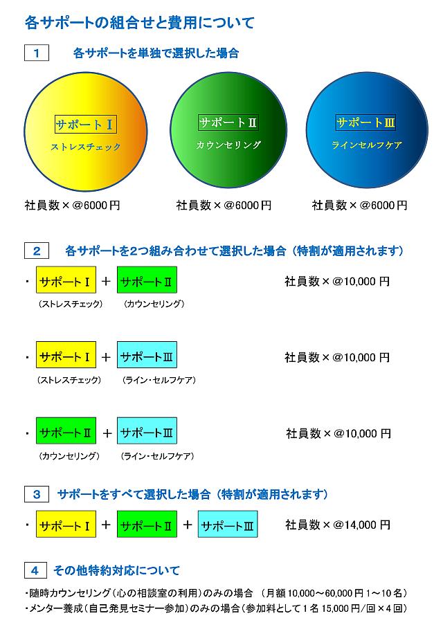 ⅢSシステム5